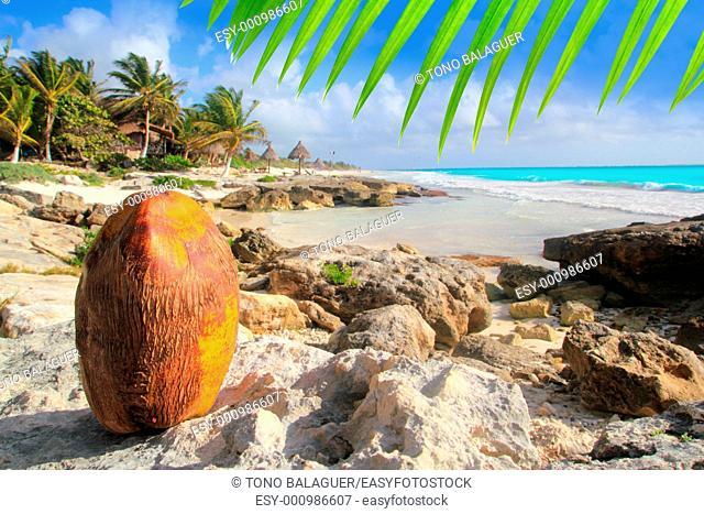Caribbean Tulum Mexico coconut turquoise beach Mayan Riviera