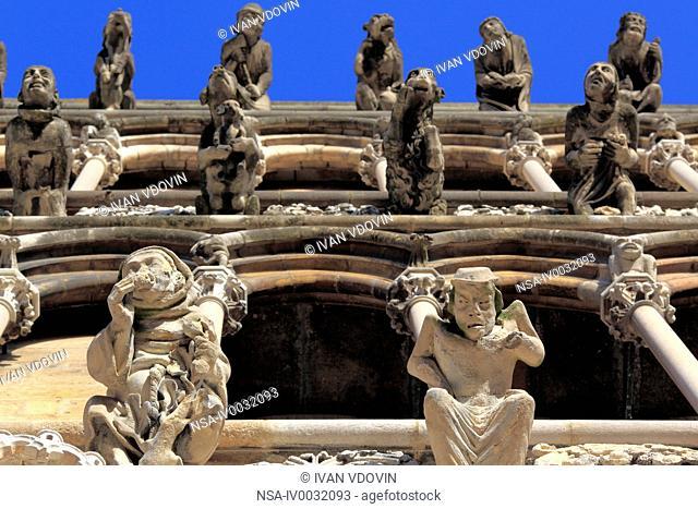 Gargoyles on facade of cathedral Notre Dame, Dijon, Cte-d'Or departement, Burgundy, France
