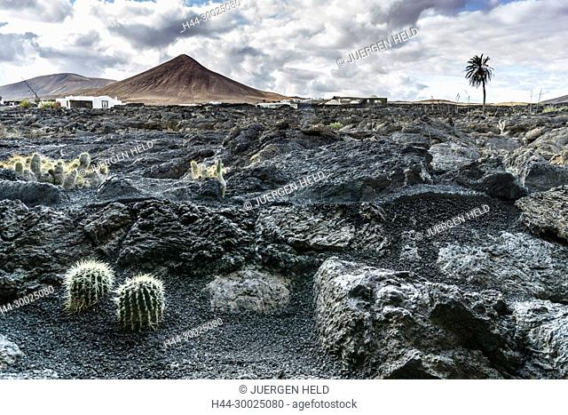 Lava Fields in front of Casa Cesar Marique Museum, Lanzarote, Canary Islands, Spain
