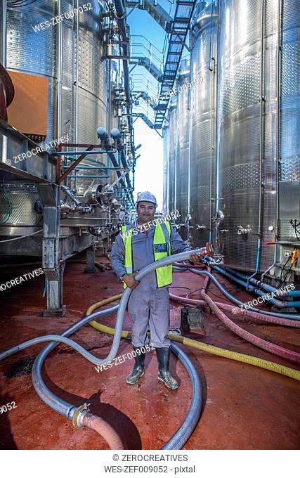 Mature man working at winery