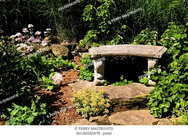 Border with romanesque garden bench and perennial plants, flowers and shrubs in spring season