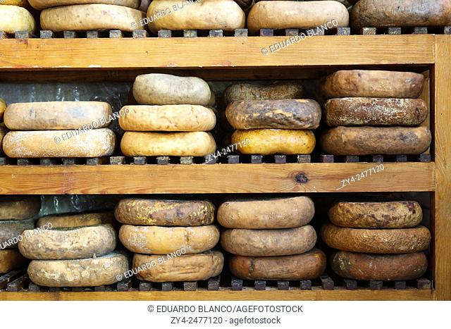 Mahon cheese. Ciutadella. Minorca. Balearics islands. Spain. Europe