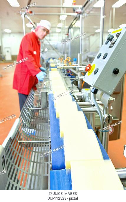 Quality control worker checking cheese on production line in processing plant