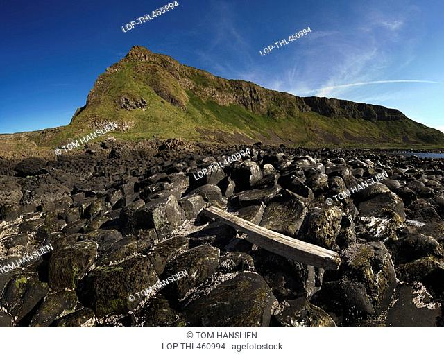 Northern Ireland, County Antrim, Giants Causeway, Driftwood on the interlocking basalt columns of the Giants Causeway, a World Heritage Site and National Nature...