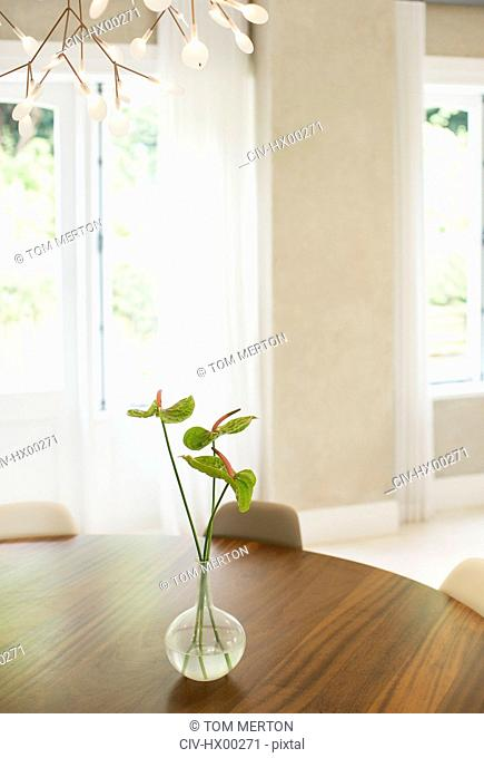 Anthurium bouquet on table in dining room