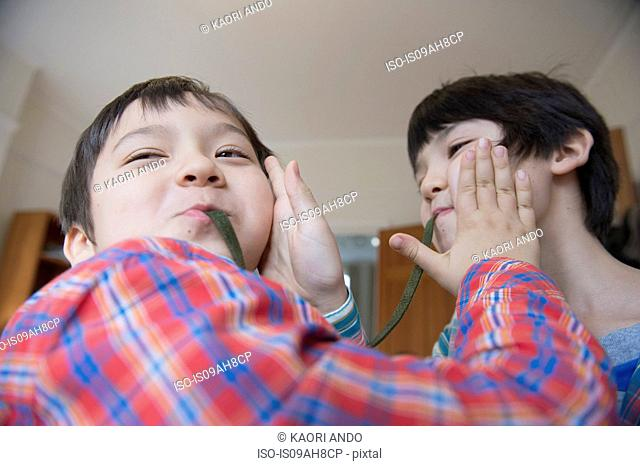 Brothers eating gummy snake