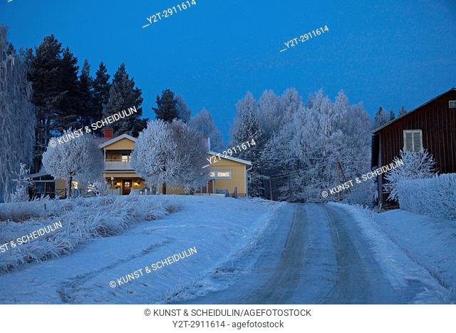 Hoarfrost covers a village at the blue hour on a cold winter day. Bredbyn, Västernorrlands Län, Sweden
