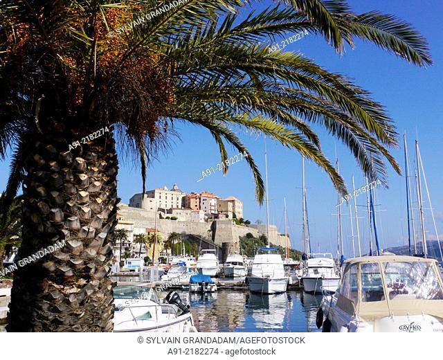 France, Corse, ville de Calvi