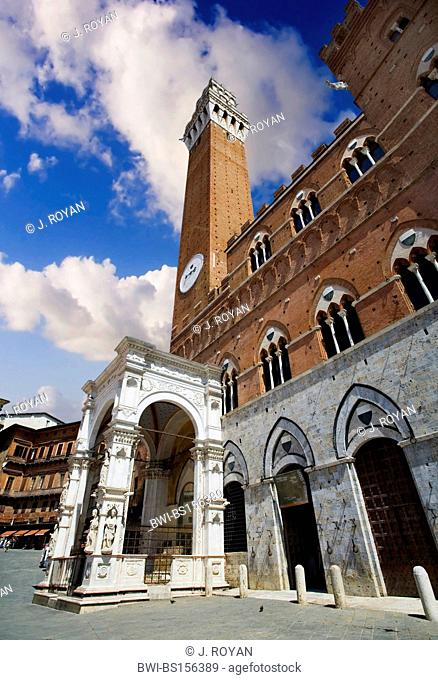 Campanile or Siena Tower view in Piazza del campo, or Il Palio, the main square, Italy, Siena