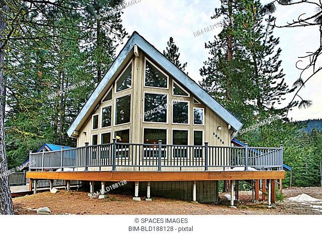 Modern cabin in rural forest