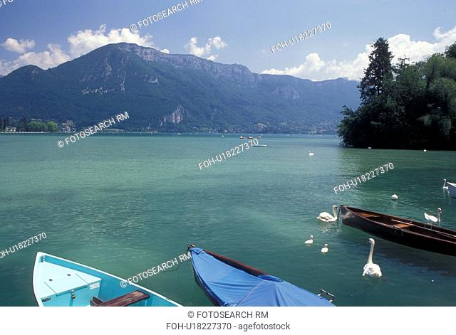 France, Annecy, Haute-Savoie, Rhone-Alpes, Europe, A family of swans swim around boats docked on the waterfront of scenic Lake Annecy (Lac d' Annecy) surrounded...