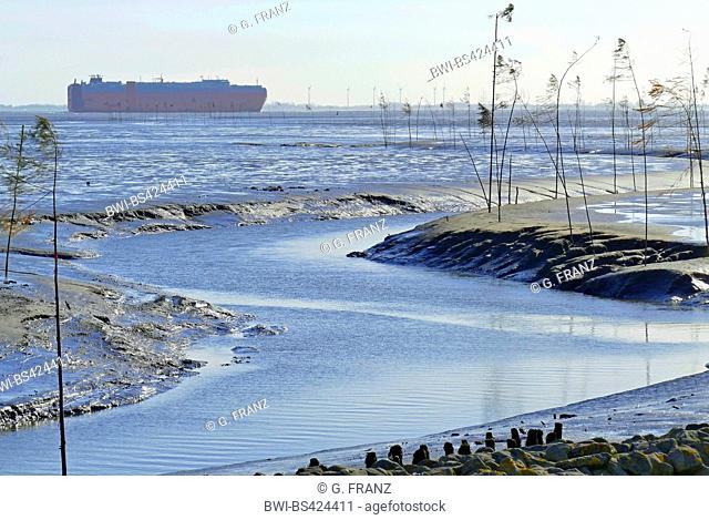 shipping channel at ebb tide marked with sticks, car carrier in background, Germany, Lower Saxony, Wremertief, Cuxhaven