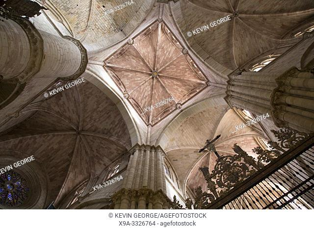 Ceiling of Cathedral Church in Siguenza; Guadalajara; Spain