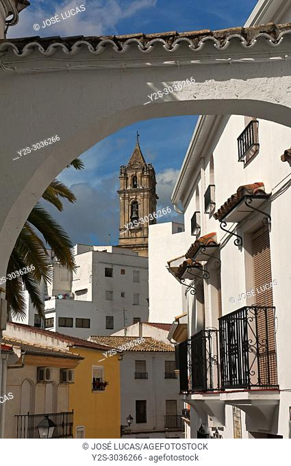Urban view with church tower. Neighborhood of El Cerro. Cabra. Cordoba province. Region of Andalusia. Spain. Europe