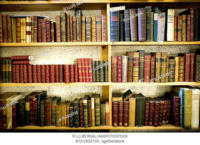 Shelves full of vintage books, Sedbergh, Cumbria, West Riding os Yorkshire, Yorkshire Dales, England, UK