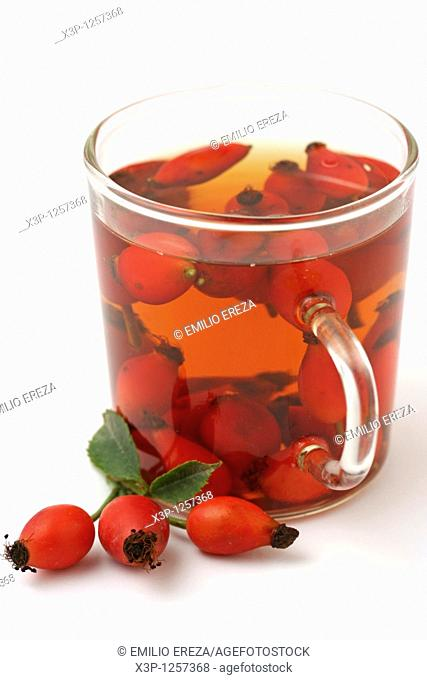 Rose hips infusion Rosa canina
