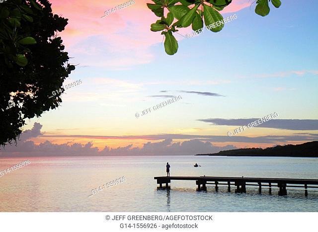 Curaçao, Netherlands Antilles, Dutch, Piscadera Bay, Caribbean Sea, pier, man, standing, rowboat, coastline, sunset, twilight, pink cloud, silhouette, bush
