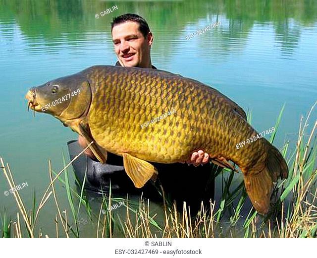 Happy fisherman holding a giant common carp