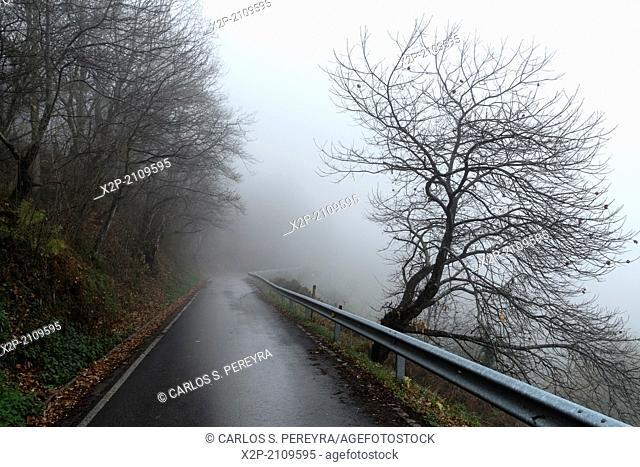 Landscape at Picos de Europa, Asturias, Spain