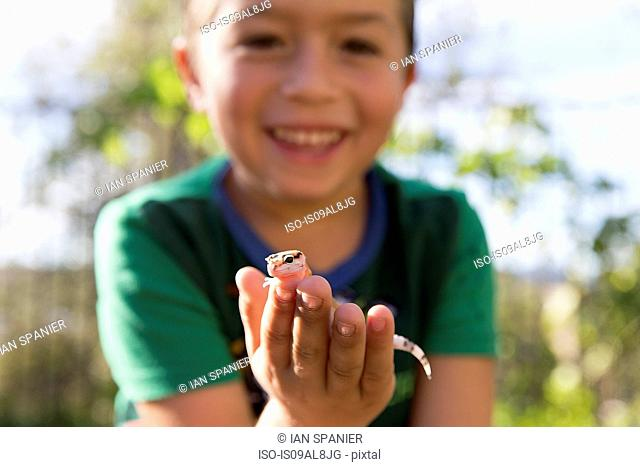 Close up portrait of boy holding gecko