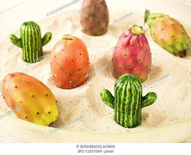 Cactus figs in sand