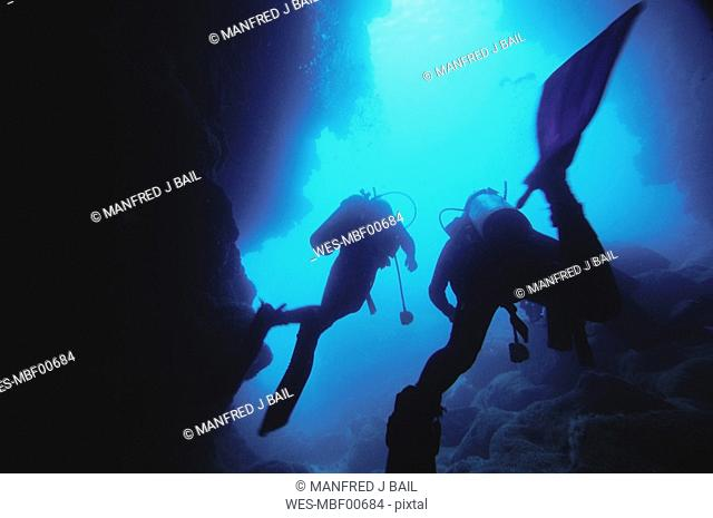 Diving and Cavern Diving, Galapagos, Wolf Island