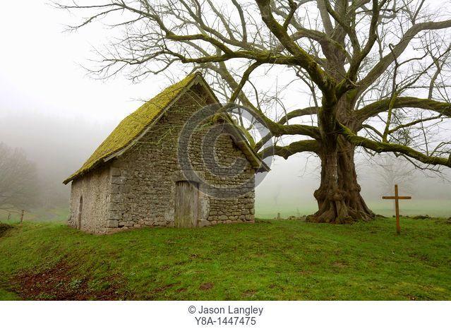 Chapelle du Mas St  Jean, Near Saint-Sulpice-le-Dunois on a foggy spring morning  Creuse, Limousin, France