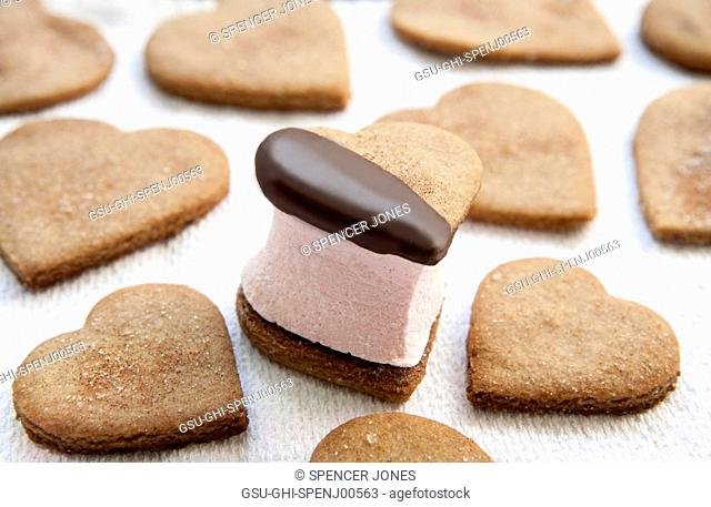 Heart-Shaped Graham Cracker Cookies and S'more Filled with Pink Marshmallow