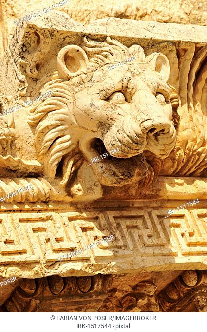 Lion head on the excavation site of Baalbek, UNESCO World Heritage Site, Beqaa Valley, Lebanon, Middle East, Orient