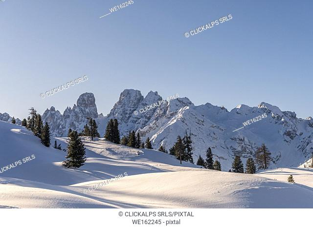Prato Piazza/Plätzwiese, Dolomites, province of Bolzano, South Tyrol, Italy. The massif of the Cristallo group