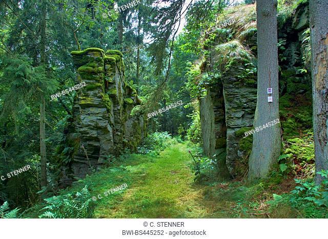 rocks at hiker path Rockenburger Urwaldpfad, Steinernes Tor bei Prosterath, Germany, Rhineland-Palatinate, Hunsrueck