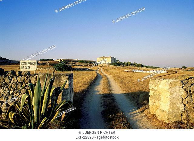 Farmhouse with country lane, typical stone wall, near Ciutadella, Menorca, Minorca, Balearic Islands, Spain