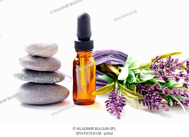 Lavender flowers and aromatherapy oil, studio shot
