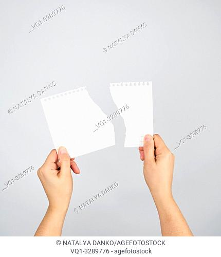 two hands hold a torn piece of paper on a gray background, copy space