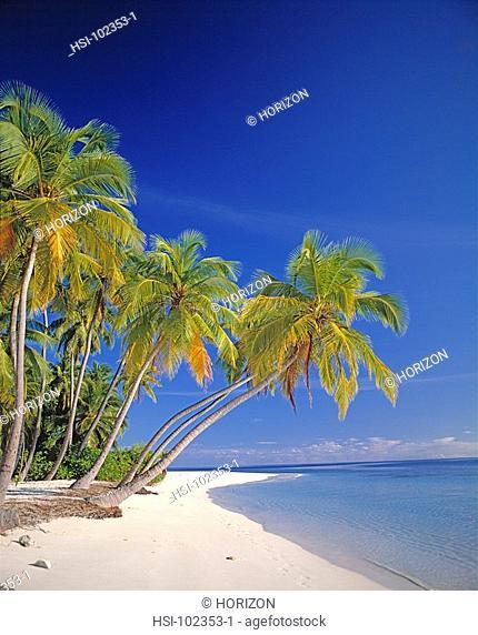 Travel, Maldives, Ihuru Island, Tropical beach