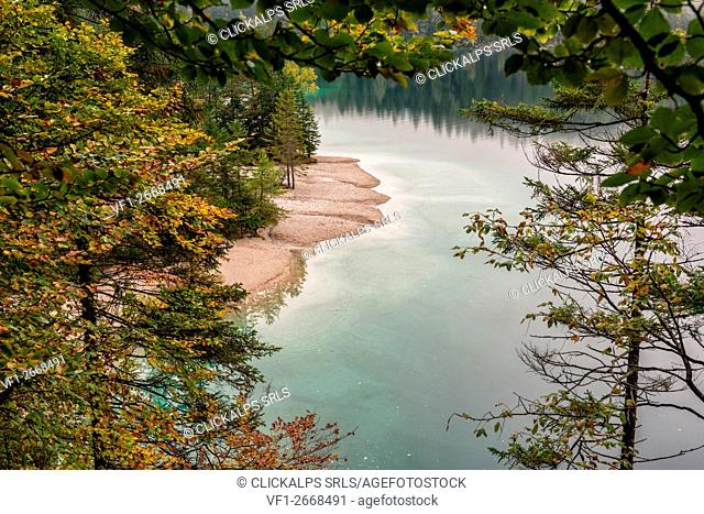 Italy, Trentino Alto Adige, Non valley, beaches of Tovel lake in autumn