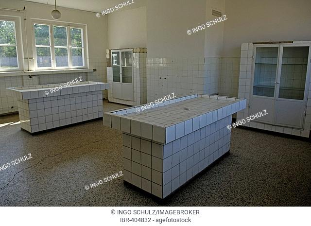 Pathology of concentration camp sachsenhausen, germany