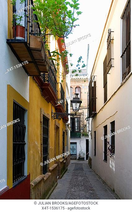 Typical narrow alley with painted buildings in Seville, Spain