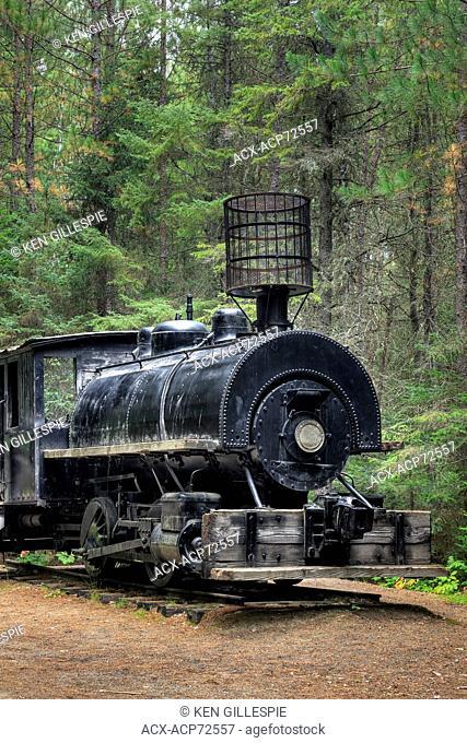 Vintage steam locomotive, circa 1910, Algonquin Logging Museum, Algonquin Provincial Park, Ontario, Canada
