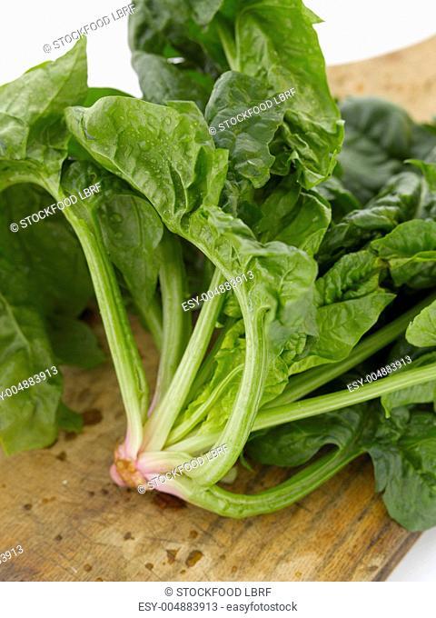 Fresh Spinach Bunch on a Cutting Board