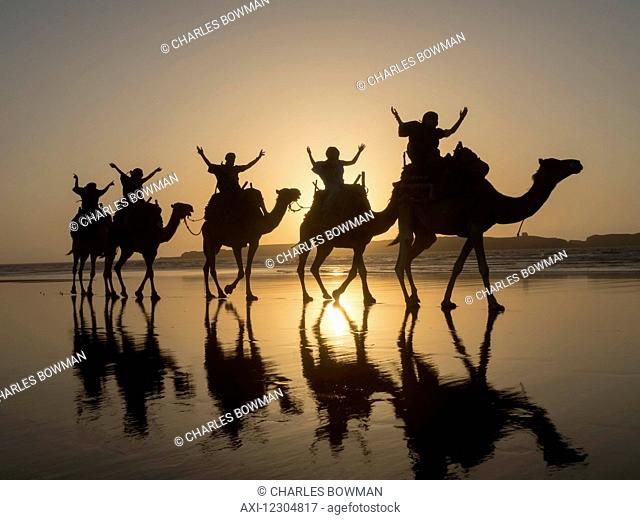 Sunset camel trek on the beach; Essaouira, Morocco