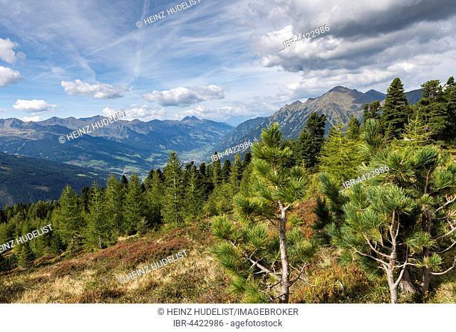 View of Gastein Valley from Zirbenweg, Graukogel, Bad Gastein, Salzburg State, Austria