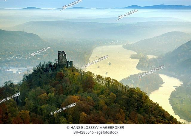 Drachenfels castle ruins in autumn with a view of the Rhine Valley, Rhine, Königswinter, Siebengebirge, North Rhine-Westphalia, Germany