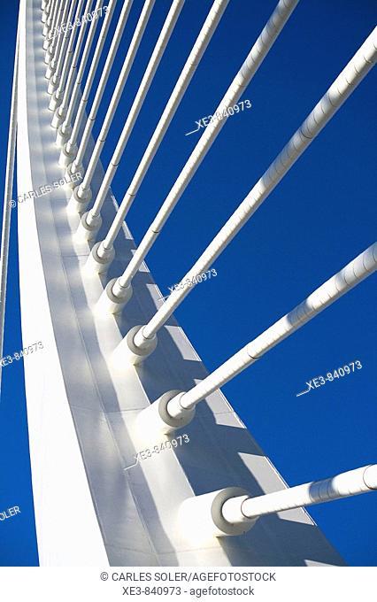 Detalle del Puente de l'Assut d'Or, Ciudad de las Artes y las Ciencias, Valencia