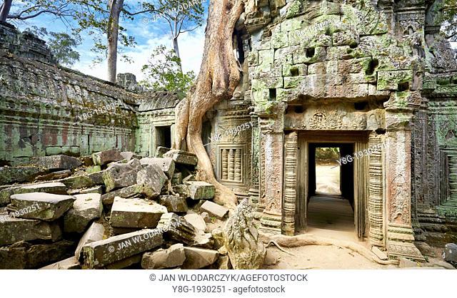 Ta Prohm Temple, Angkor Temple Complex, Siem Reap Province, Cambodia, Asia, UNESCO