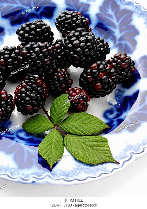 Ripe blackberries on an antique plate on a white background
