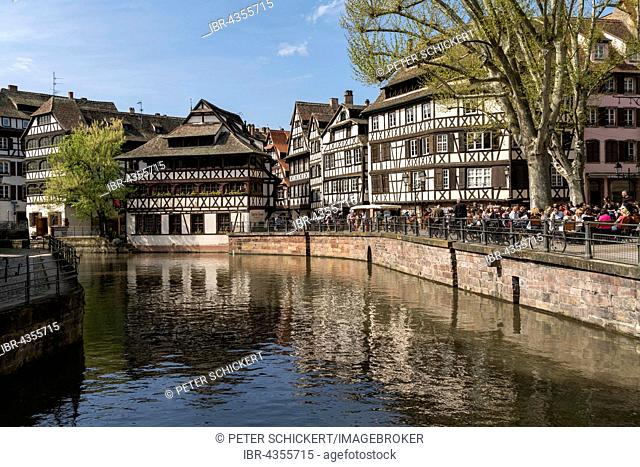 Half-timbered houses on the river Ill, La Petite France, Strasbourg, Alsace, France