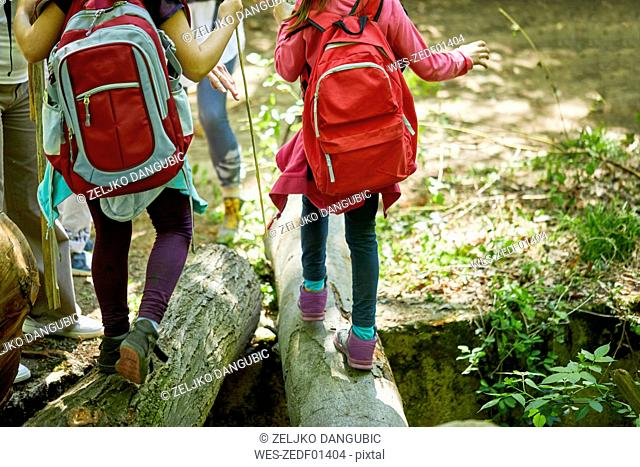 Girls with backpacks balancing on logs in forest
