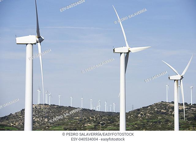 windmills for electric power production, El Buste, Zaragoza, Aragon, Spain