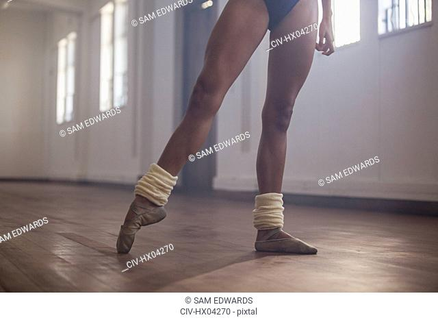 Graceful young female ballet dancer practicing in dance studio